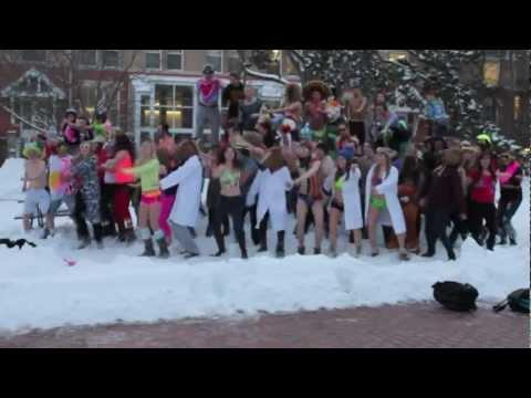 University of Guelph – Harlem Shake