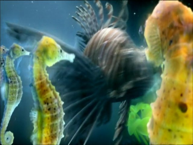 The Chemical Brothers – The Salmon Dance