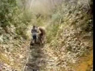 Chemin creu