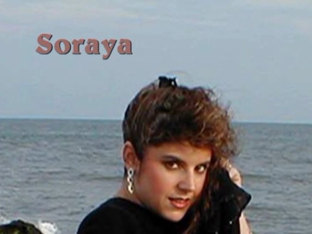 Middle Eastern Belly Dancer Soraya of NJ in Amr Diab concert and more!