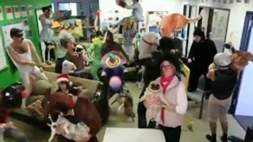 Baauer – Harlem Shake 2013 [Official Music Video]
