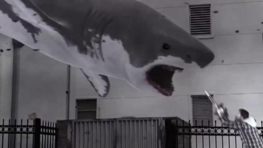 Top Video Moments of 2013: 'Sharknado' to Harlem Shake