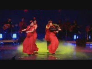 AL ANDALUS FLAMENCO NUEVO Dance Lyon Danse Cours Guitare Salsa Lyon Theatre Ecole El Andalouse Zumba Dancing danseuse Tangos RumbaS