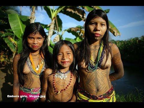 Tears of the Amazon | Documetary 아마존의 눈물 EP.2