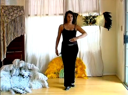 How to Samba: Brazilian Dance Lesson : How to Move Arms in the Brazilian Samba Dance