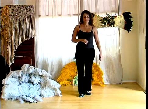 How to Samba: Brazilian Dance Lesson : How to Move Hips in the Brazilian Samba Dance